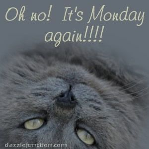 Monday. .......... Dj quote.          Dazzle Junction.Com. ....