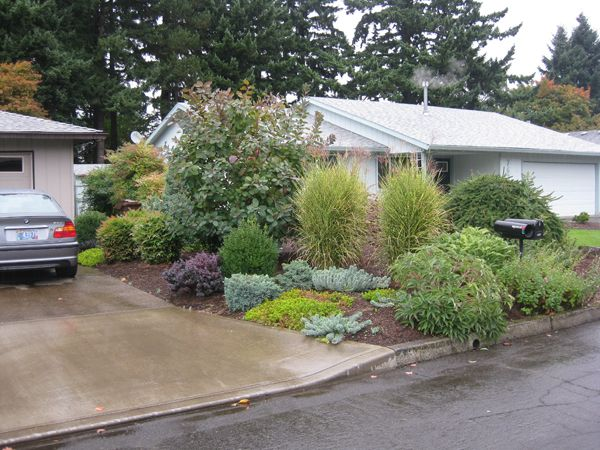 low maintenance pacific northwest landscape landscape front yardsconcrete