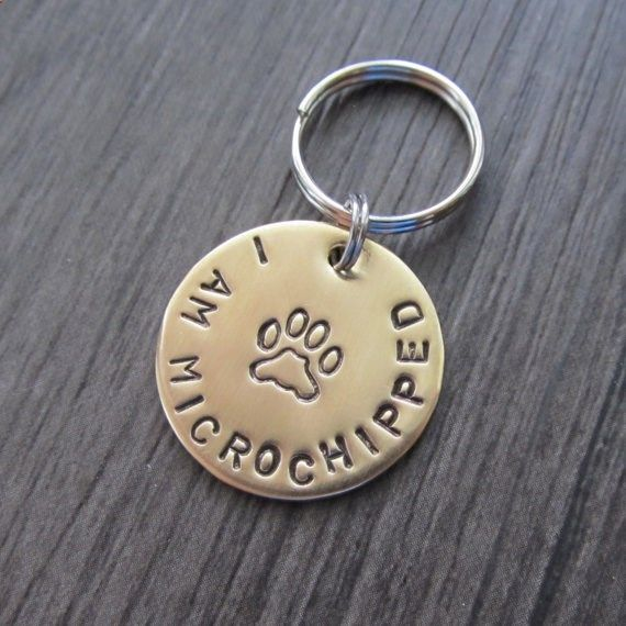Dog Tags - This I AM MICROCHIPPED Brass Dog Tag is a must have for your darling fur baby if your pup is microchipped. Add it to the tag your dog already has