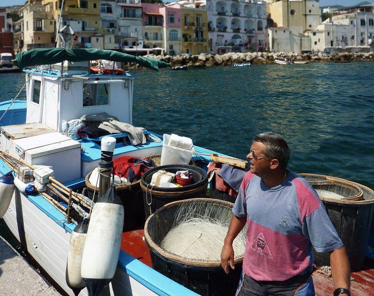 #Pescatore a #Ischia Ponte. #Pesce fresco ogni mattina :)  Sito: http://www.hoteleuropaischia.it/  whatsapp (non del pescatore ;): +39 345 107 1174