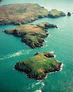 Skomer Island, Wales www.welshwildlife.org