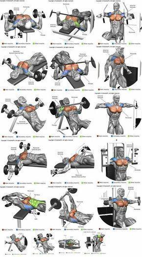 Top 10 Deltoide Workouts: Machen Sie Ihre Schultern STÄRKER und GRÖSSER – #Del… – Kochen