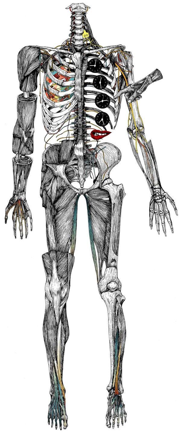 """Body"" illustrations 1 by Wataru Yoshida, via Behance"