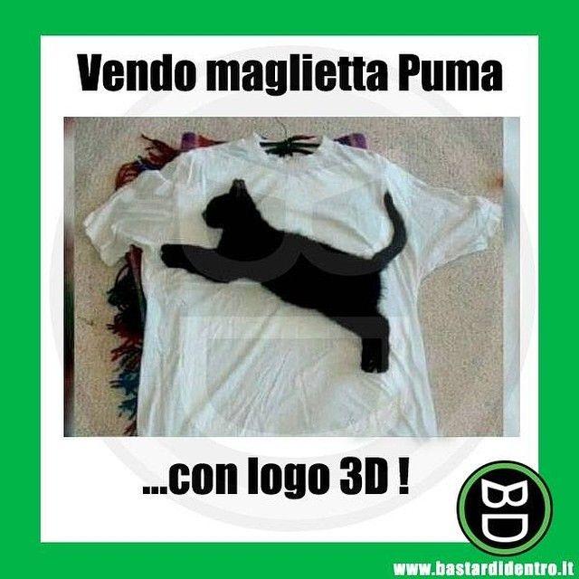 #maglietta con logo 3D! #bastardidentro #gatto www.bastardidentro.it