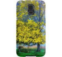 Golden Acacia Wattle Tree in Full Bloom Samsung Galaxy Case/Skin