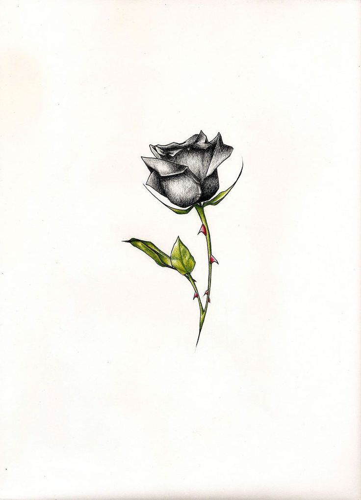 1000 ideas about black rose tattoos on pinterest wreath. Black Bedroom Furniture Sets. Home Design Ideas