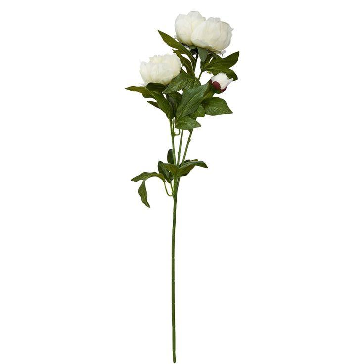 Na jaře nás matka příroda hýčká těmi nejkrásnějšími květinami. Není se čemu divit, po zimě si zasloužíme zářivé barvy a