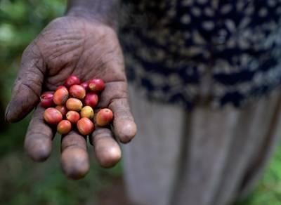 ethical living!!! Fair trade Ugandan coffee...love!