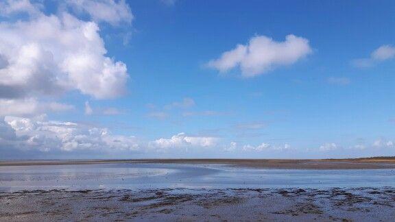Uitzicht over de waddenzee bij Marina aan 't wad, Schiermonnikoog