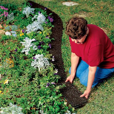 Dog Proof Your Flower Beds