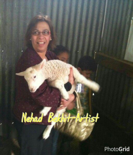 Nehad Bekhit-Artist