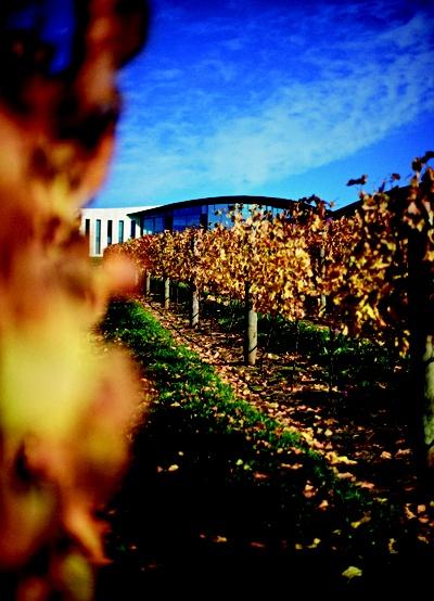 Mornington Peninsula_Vineyards and Wineries_Port Phillip Estate (1), Victoria, Australia.