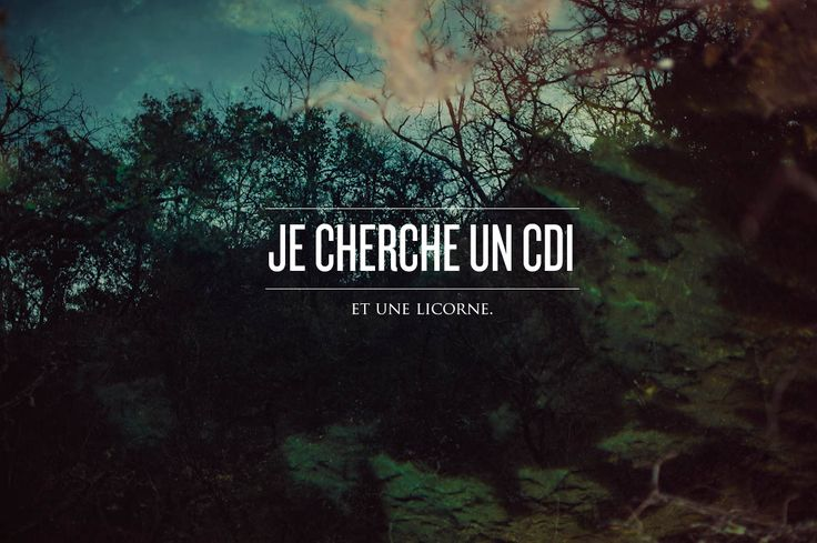 Je cherche un cdi. Et une licorne. #JeChercheUnCDI #PoleEmploi #job #utopie
