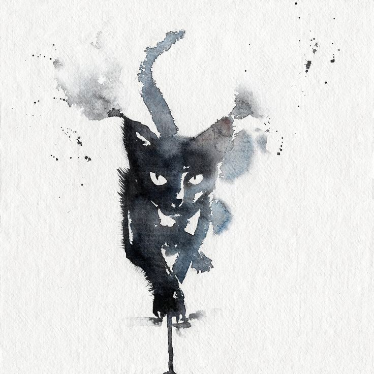 Tattoo Designs Bebe Bapu: 25+ Best Ideas About Black Cat Tattoos On Pinterest