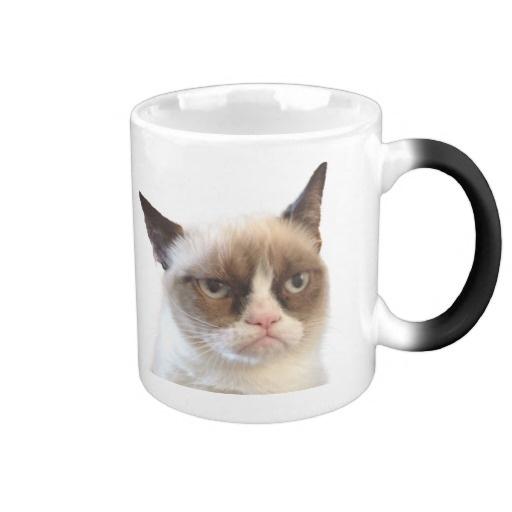 Grumpy Cat  Katzen-Becher Tasse #MürrischeKatze #GrummpyCat #Tasse 18,80 €
