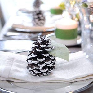 Frosty Pinecone — just one of our festive table setting ideas.