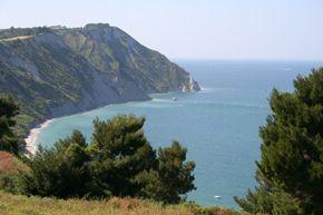 Pubblicita' gratuita per aziende: Marche seconde in Italia per green economy