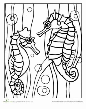15 best eric carle mister seahorse images on pinterest for Mister seahorse coloring page