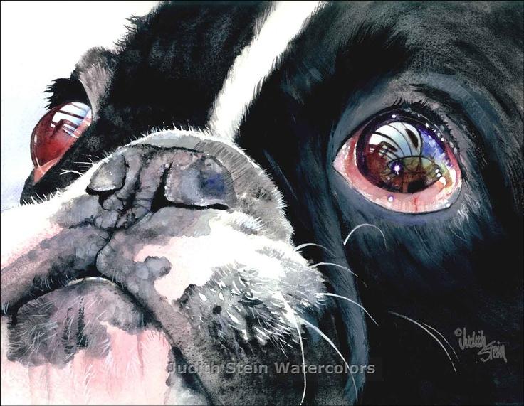 FRENCH BULLDOG Pied Dog 15x11 Signed Watercolor Art Print - artist Judith Stein