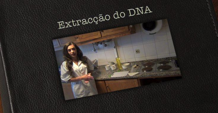 Extracção do DNA  Material Premiado em 2012 - Menção Honrosa.