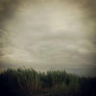 7:43 - E.B. - (...) tutte le cose si affollano su una zolla d'aria (...)