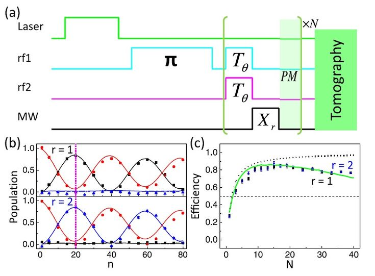 """Quantum computer that 'computes without running' sets efficiency record!  (Phys.org)—Due to quantum effects, it's possible to build a quantum computer that computes without running—or as the scientists explain, """"the result of a computation may be learned without actually running the computer."""" So far, however, the efficiency of this process, which is called counterfactual computation (CFC), has had an upper limit of 50%, limiting its practical applications."""