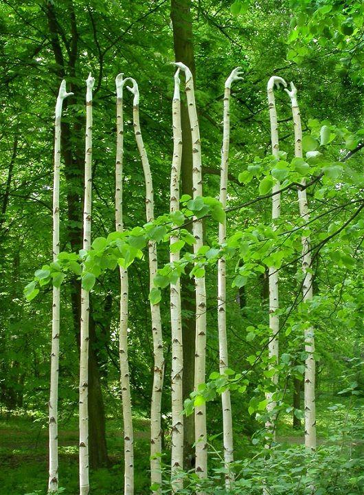 La sculpteur Olga Ziemska utilise des branches et des matériaux naturels pour ses structures biologi