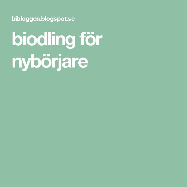 biodling för nybörjare