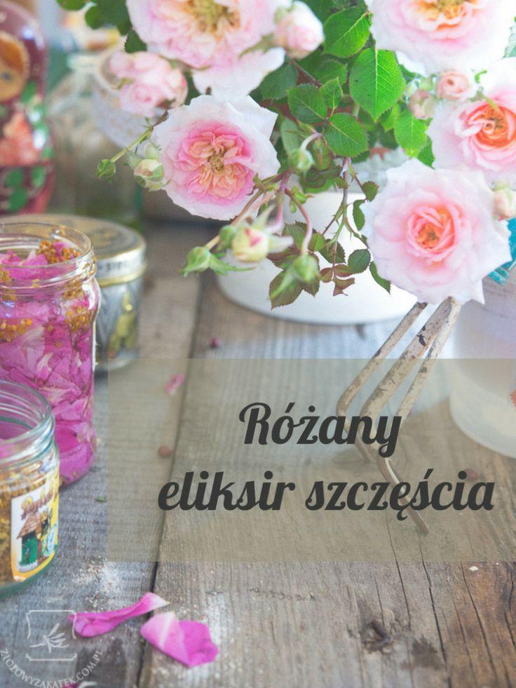 Rose elixir of hapiness