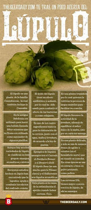 Infografía: un poco acerca del lúpulo.  http://ift.tt/1ZVTYhD