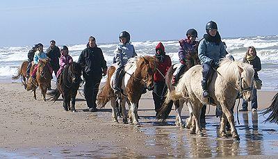 Ridecenter - Rideture på stranden, Lønstrup, Dyregård | Skallerup Seaside Resort A/S