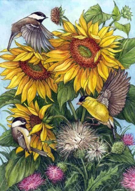 79372739_large_LR_lrg_sunflrs_birds_2 (442x624, 307Kb)