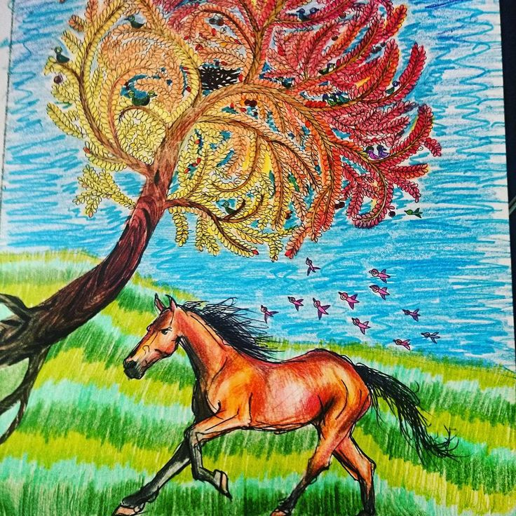 """""""Znaleźliśmy mieszkańca Wysp  #Wyspy #koń #koloruje #beautiful #kolorowanie #kolorowanka #art #colorful #relax #anitagraboś #color #coloringaddict…"""""""