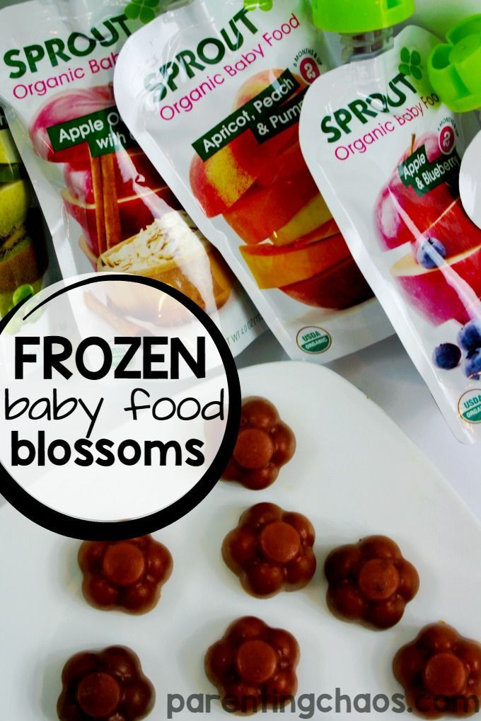 Frozen Baby Food Bites are a Healthy Snack that Your Toddler will LOVE! #SproutBabyFoods #ad