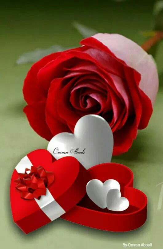 Pin by Maher Dabour on ✿❤ ورود وقلوب ❤ | Love rose, Roses gif