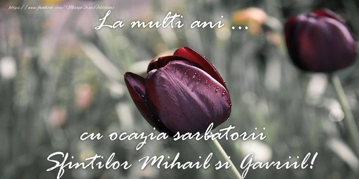 La multi ani ... cu ocazia sarbatorii Sfintilor Mihail si Gavriil!