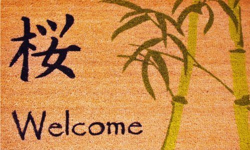 """Asian Welcome 17""""x29"""" Coir with Vinyl Backing by Momentum Mats. $19.99. Makes a Great Gift - Free Gift Enclosure. 100% Natural Coir with Vinyl Backing for Long-Lasting Wear and Durability. Traps Dirt and Moisture. Fade Resistant, Color Fast and Weather Tolerant. In Stock - Ships in 1-2 days. Momentum Mats has been a trusted manufacturer for 28 years and we take great pride in the fact that we use only 100% natural coir and vinyl in our doormats.  Our manufacturin..."""