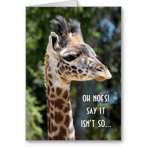 Cute, Funny Giraffe Birthday Card