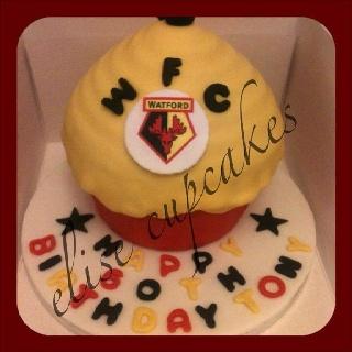 Watford FC x