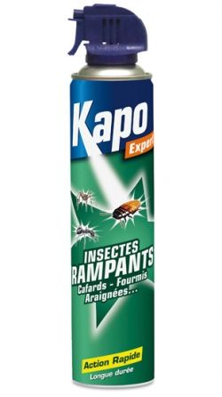 Aérosol tous insectes rampants 750ml Kapo