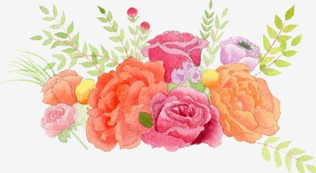 زهرة الخزامى زهرة الخزامى وردي الزهور Png وملف Psd للتحميل