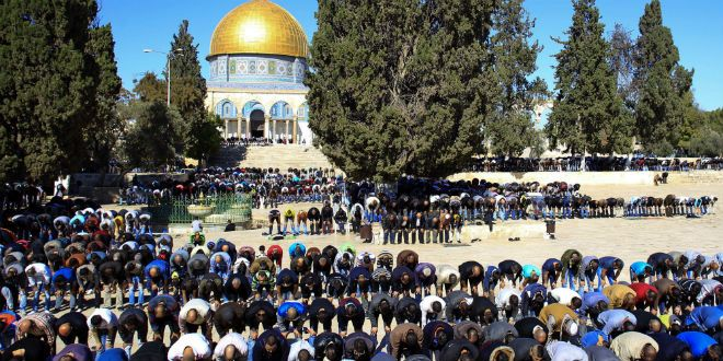 They will persecute Israel as they did JESUS. Both, G-D'S beloved. Please forgive them Father- they know not what they do. 😔Second UNESCO Resolution: Jerusalem is Muslim, Temple Mount Islamic