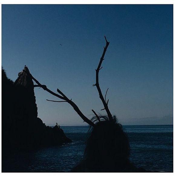 ody & nature/ Sea & birds (2016). Extracto de serie