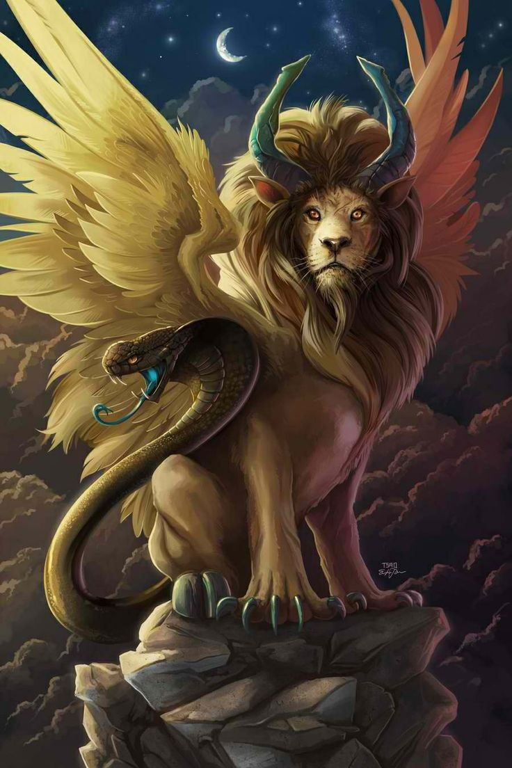 Chimera was, according to Greek mythology, a monstrous fire-breathing female and male creature of Lycia in Asia Minor, composed of the parts of three animals — a lion, a snake and a goat. Usually depicted as a lion, with the head of a goat arising from its back, and a tail that ended in a snake's head, the Chimera was one of the offspring of Typhon and Echidna and a sibling of such monsters as Cerberus and the Lernaean Hydra.
