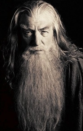 Ian Mc Kellen - Gandalf the Grey