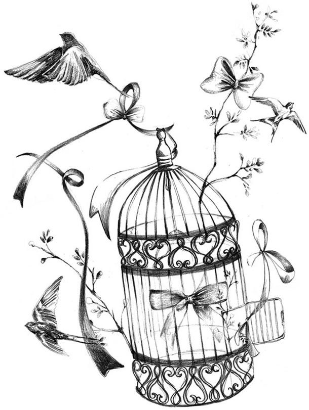 Dessin Oiseau En Cage tatouages | pierced and tatted. | pinterest | decoupage, decoupage