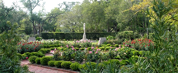 1000 Images About Parks In New Orleans On Pinterest New Orleans City New Orleans And
