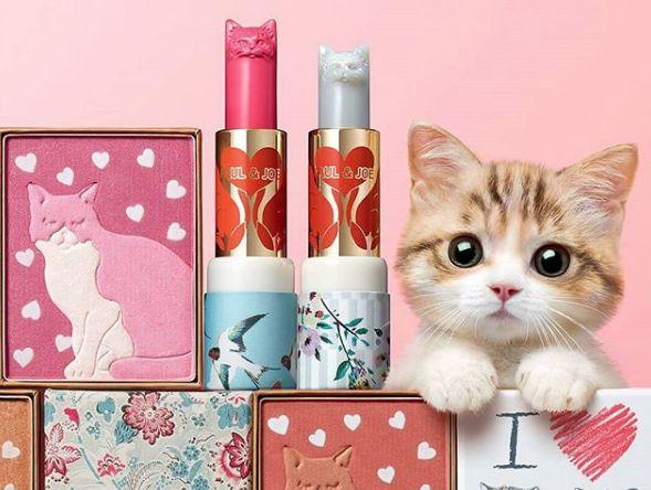 Estos maquillajes te encantarán si amas a los gatitos – Bossa