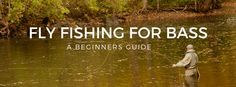 A beginners guide to fly fishing for bass