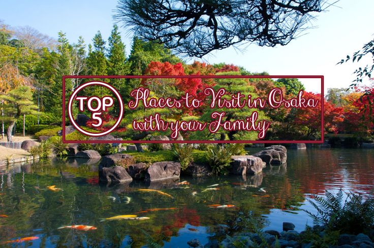 Osaka - a family friendly destination! Here are the 5 fun attractions!